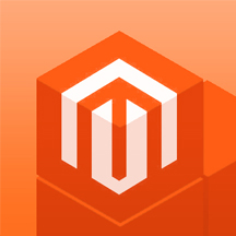 Magento consulting
